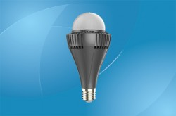 100 Watt LED Bulbs