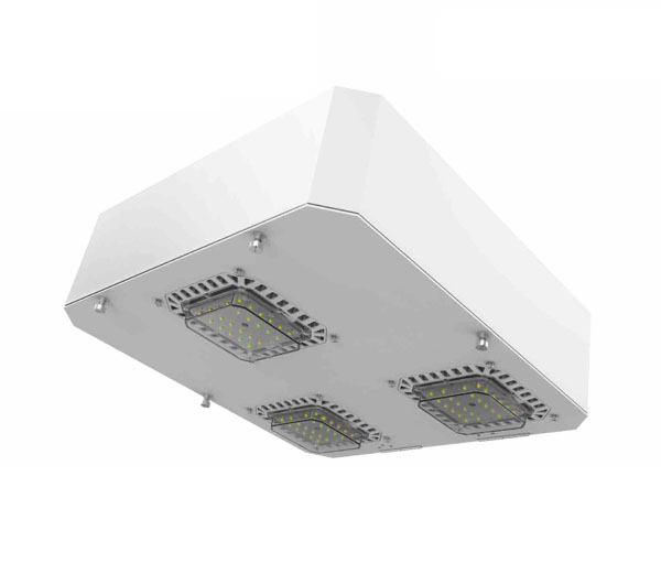 Led Canopy Lights Manufacturer Supplier Exporter