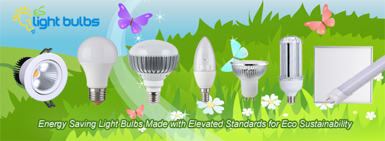 LED Light Manufacturers in China