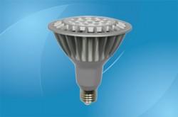 PAR38 LED Bulbs