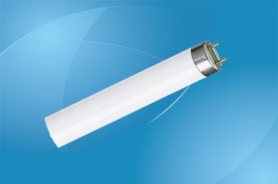 T12 Fluorescent Lamps