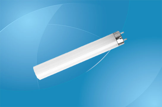 T8 Fluorescent Lamps
